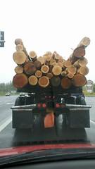 logs_c