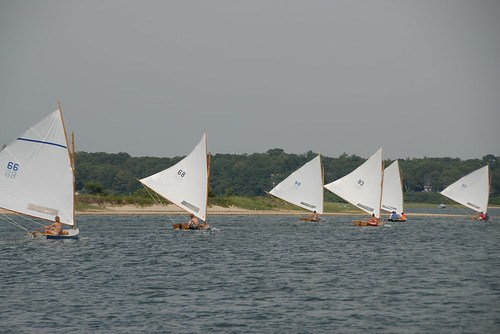 Cotuit Skiffs on the run before the wind