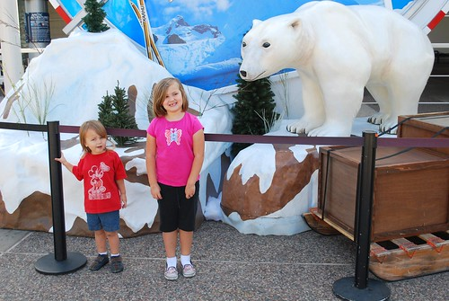 watch out for that polar bear!