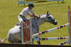 Show Jumping - Prop