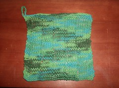 Grid Pattern Dishcloth