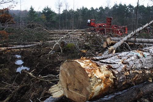 Timbering Equipment