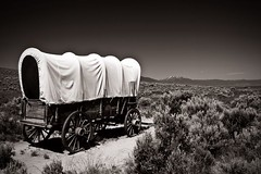 Oregon Trail, Covered Wagon