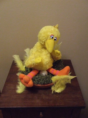 big bird & his nest