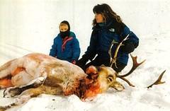 sarah palin hunting
