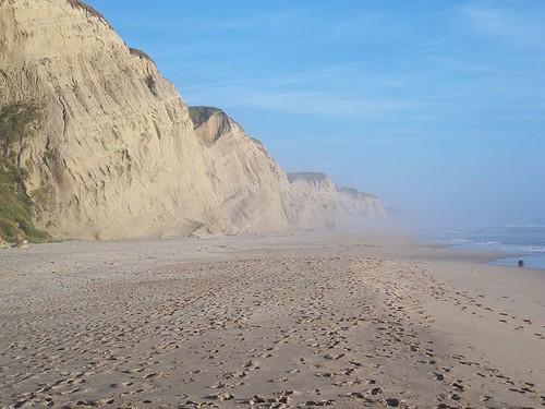 san gregorio state beach