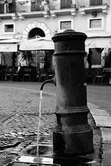 er nasone by Paolicchio