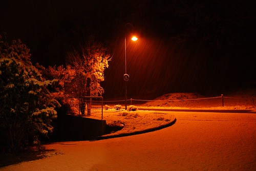 Der_erste_Schnee_2008_00011