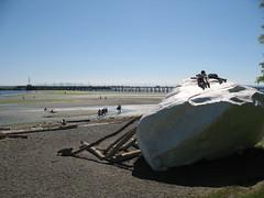 White Rock 092
