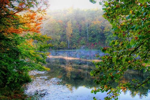 Peeking through at Fall