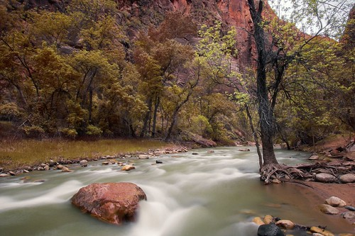Zion Virgin River 1