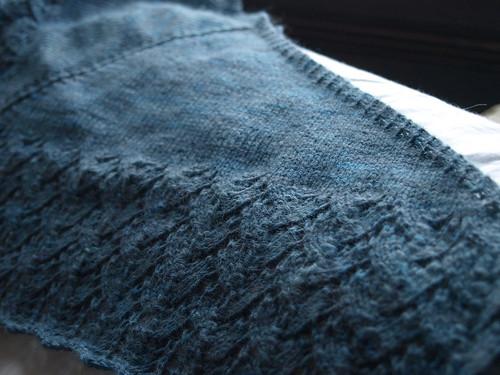bluelace-4