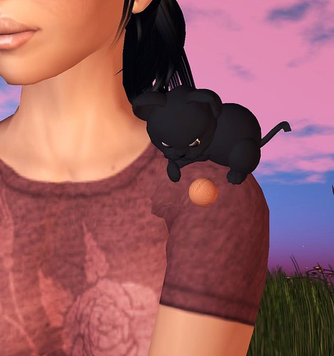 Mean Black Kitty