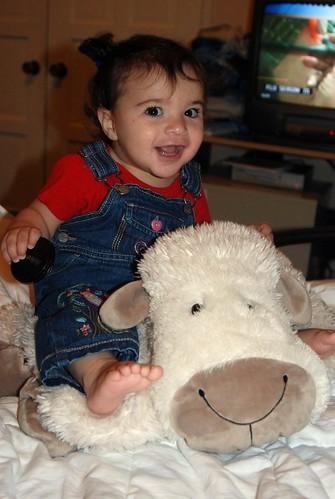 11 month sheep photo