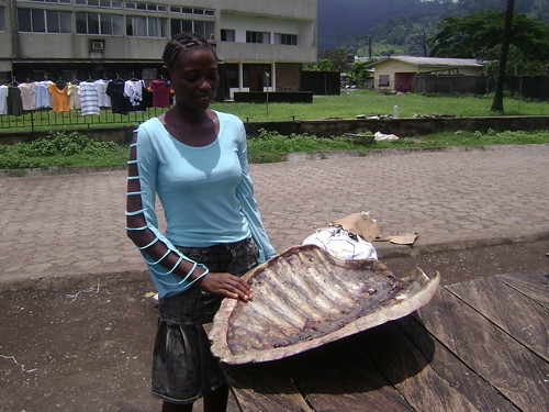 Nancy, Beas younger sister, and I went to the fish market, where we found this huge turtle shell. The turtle meat was on sale with the fish! And no, its not legal.