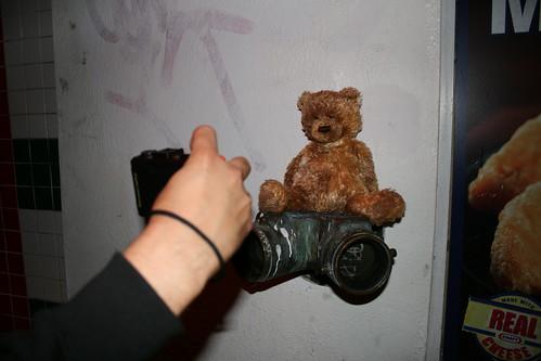 The end is near: Cute, dirty, lonely teddy bear, San Francisco