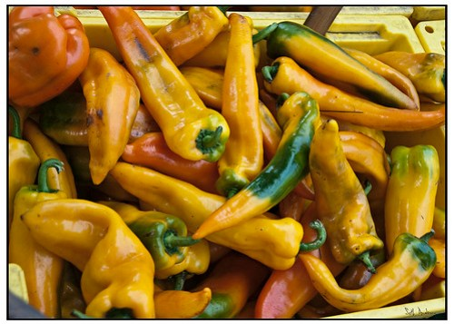Peppers and Hues