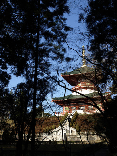 成田山新勝寺 初詣 4