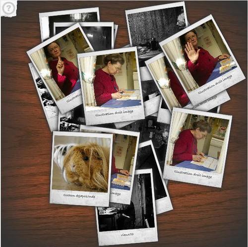 copie écran Polaroid Gallery