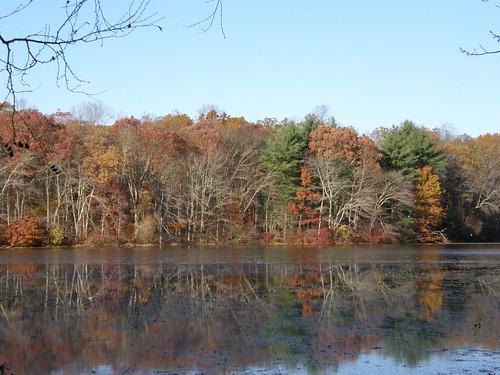 Mc Laughlin Pond