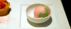 Rhubarb Sorbet