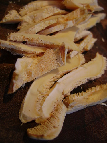 Sliced Hedghog Fungus