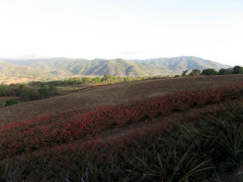 El Chocoyero, Ticuantepe