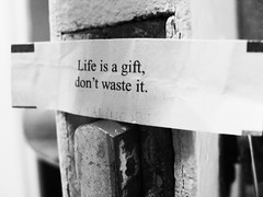 Life Not Wasted