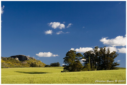"IMG_9909 • <a style=""font-size:0.8em;"" href=""http://www.flickr.com/photos/20681585@N05/2971647500/"" target=""_blank"">View on Flickr</a>"