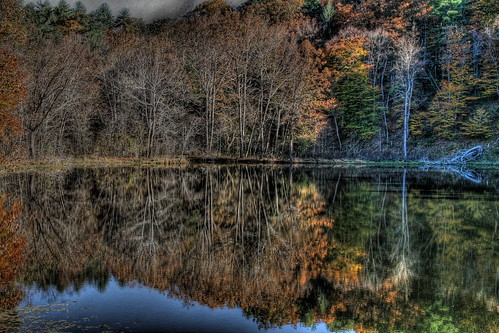 As Autumn Wanes