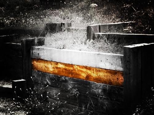 wood_brick