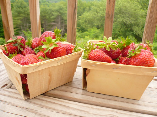 Killdeer Farm Strawberries