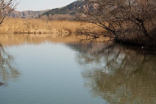 Rio Henares