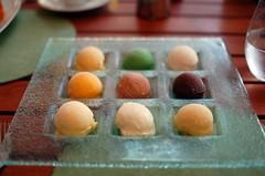 Mansion Ice Cream Tasting