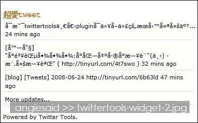 twittertools-widget-2.jpg