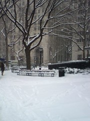Madison Sq. Park