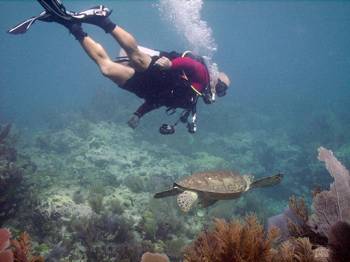Rainbow Reef Divemaster Eric and a Sea Turtle