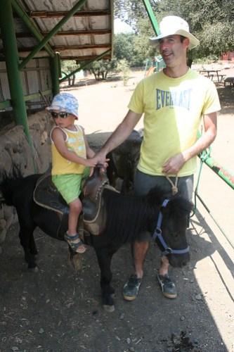 Con il pony