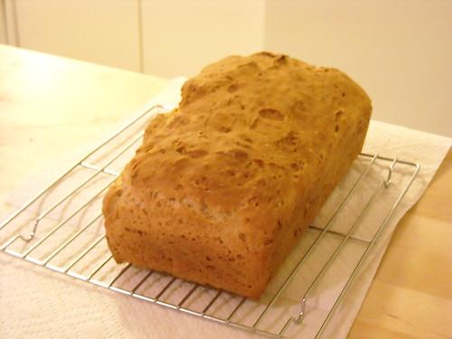 Gluten Free Sourdough Experiment #2 006