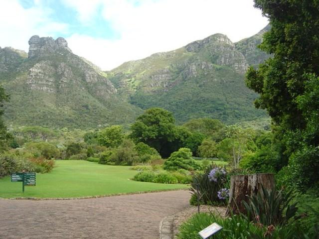 Kirstenbosch Botanical Gardens Cape Town