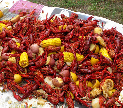 crawfish on the table
