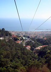 Going down to Funchal in the cable car