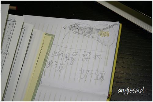 b-20080808_183336.jpg