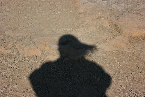Hair Shadows