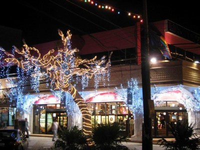 Arbol Diciembre 2008-1