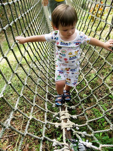 Jayden rope bridge