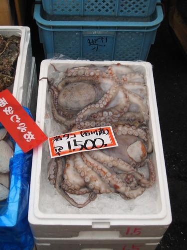 octopus_tako