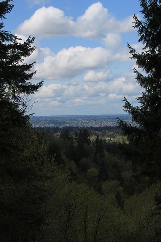 Cougar Mountain - Far Country Trail - View (Portrait)