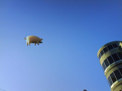 Cerdo lanzado desde Irán antes de hacer impacto en Ciudad Juárez
