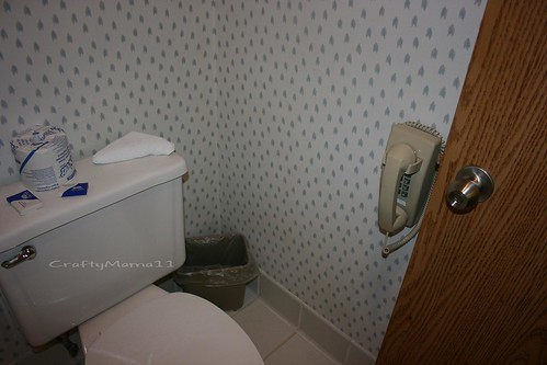 A Phone in the bathroom?